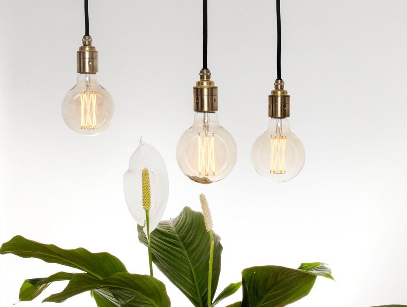 exposed lighting. Elva Exposed Filament Light Lighting S